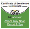 Certificate of excellence 2015 by trip advisor